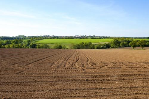 Le marché des terres agricoles en2020